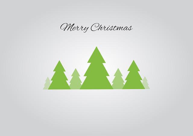 christmas-tree-1093957_640